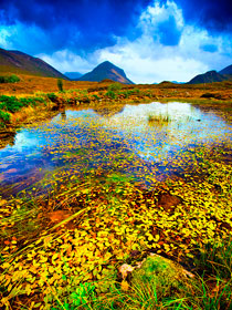Autumn pond, Isle of Skye, Scotland