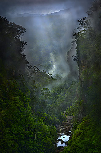 Highland fog, Carrington Gorge, NSW